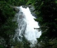 Chennai to Wayanad Budget Tour Package 2 Nights-3 Days