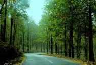 Chennai to Wayanad Honeymoon Tour Package 2 Nights-3 Days