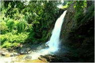 Ernakulam (Cochin,Kochi) Wayanad Tour Package 1 Night/ 2 Days