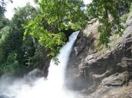 Kalpetta to Wayanad Family Tour Package 2 Nights- 3 Days