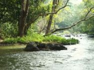Chennai to Wayanad Students Tour Package 2 Nights-3 Days