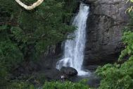 Mysore to Wayanad Waterfalls Tour Package 2 Nights-3 Days