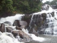 Chennai to Wayanad Waterfall Tour Package 2 Nights-3 Days